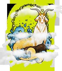 Horoscoop sterrenbeeld steenbok